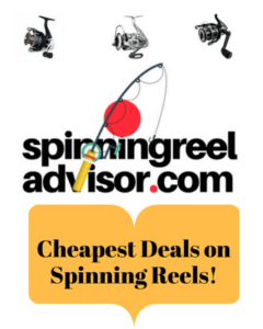 Cheap Deals onSpinningreels