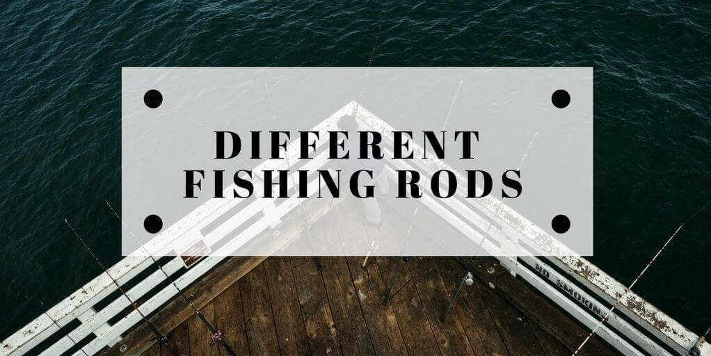 Different Types Of Fishing Rods Amp Reels Explained