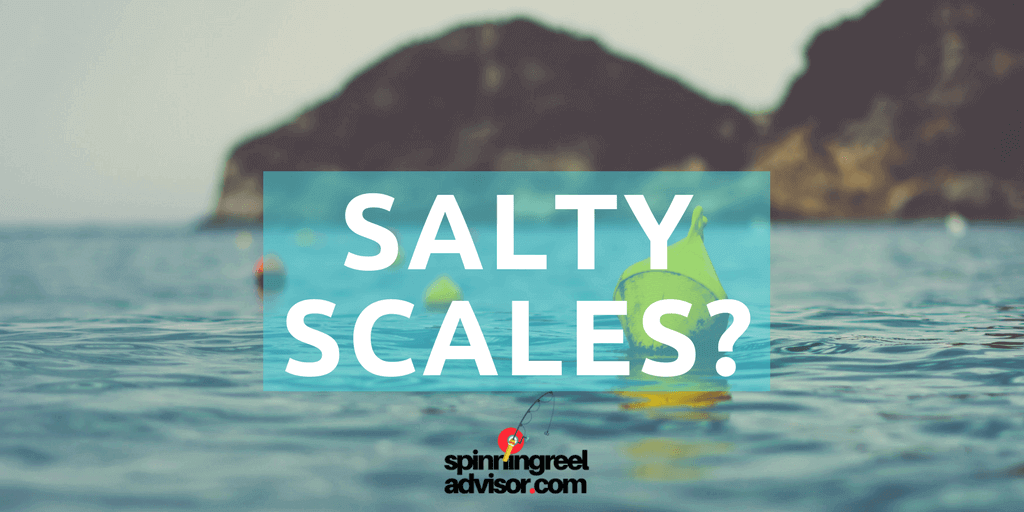 salty scales review