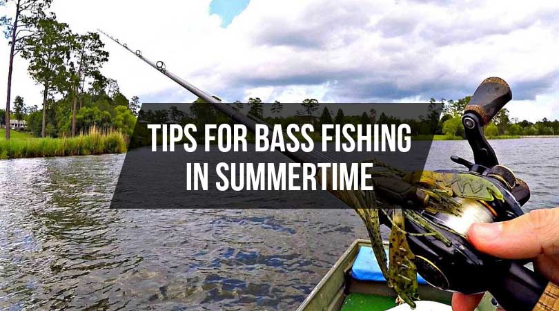 Tips-for-Bass-Fishing-in-Summertime