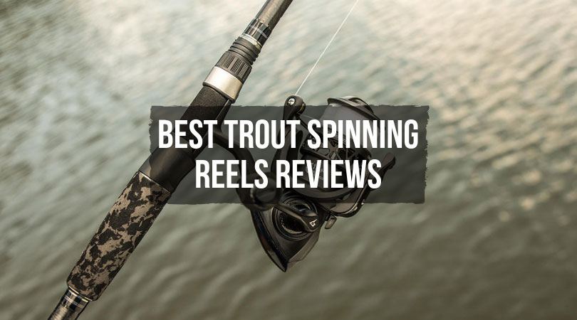 Trout Spinning Reel Reviews