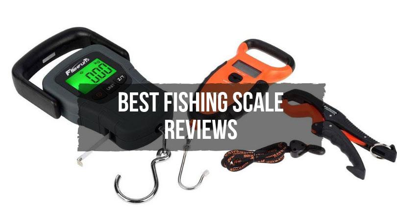 Best Fishing Scale