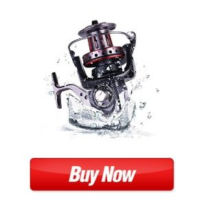 Spinning Reel Saltwater Fishing Reels Battle II with Freshwater Fishing Reel