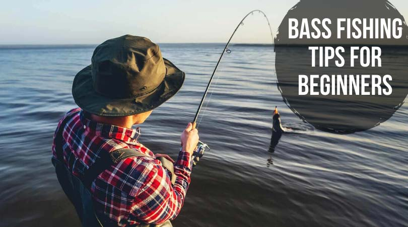 Bass-Fishing-Tips-for-Beginners