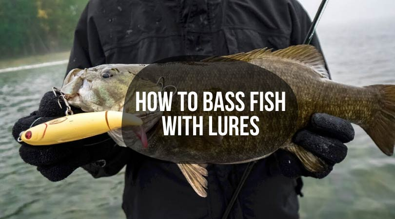 How-to-Bass-Fish-with-Lures